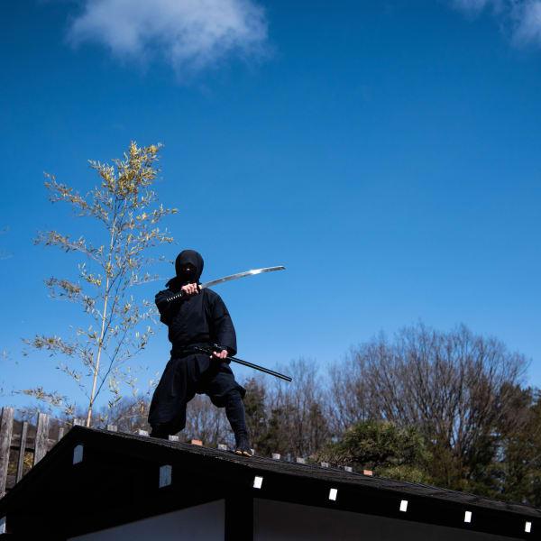 Ninja sul tetto a Edo Wonderland, Nikko