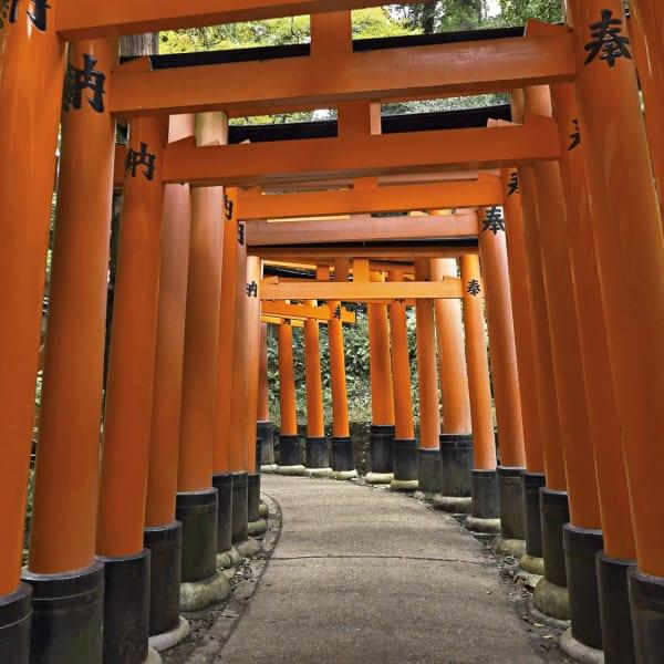 Tempio di Fushimi Inari