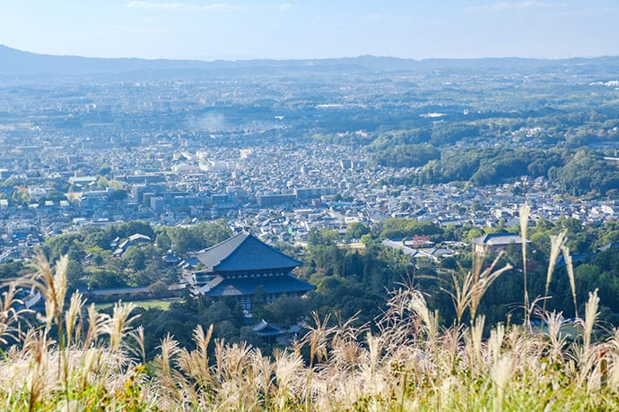 Nara's temples and shrines are set in beautiful countryside.