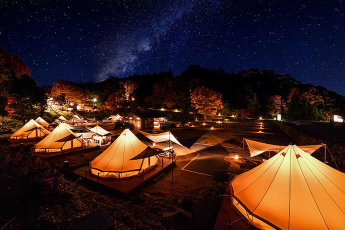 Stargazing at the Starry Sky Forest Camping Village.