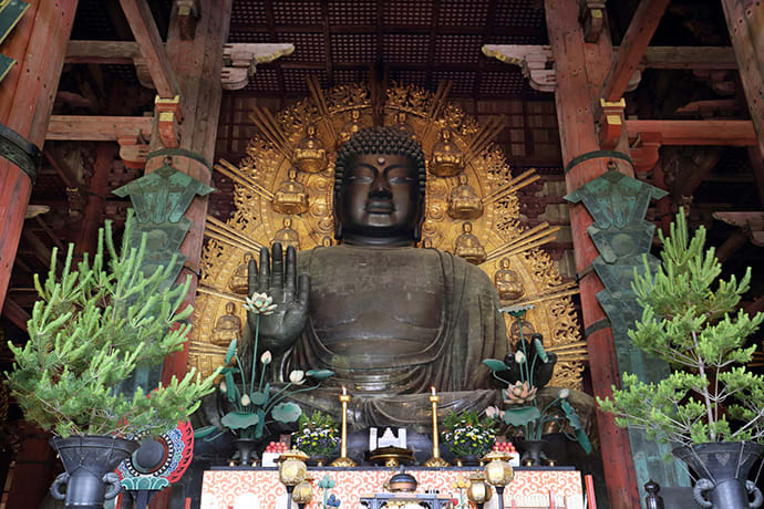 Your guide can inform you about the history of the large Buddha statue at Todaiji Temple.
