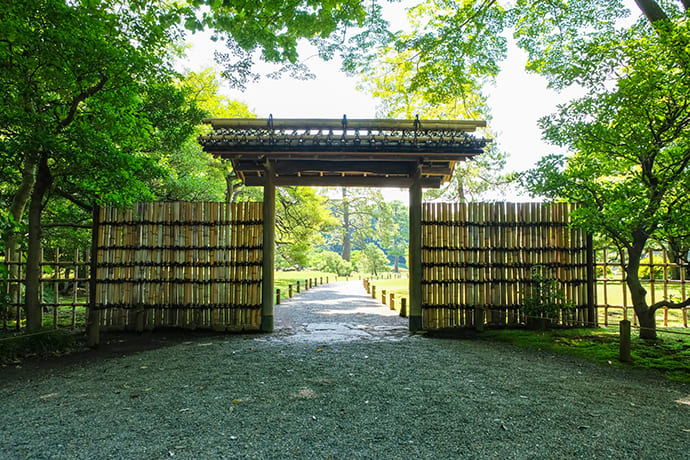 The garden extends out beyond the bamboo gate in the inner courtyard of Rikugien Gardens.