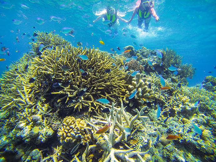 Snorkeling is popular at Ida Beach, one of Iriomote Island's most beautiful stretches of coastline