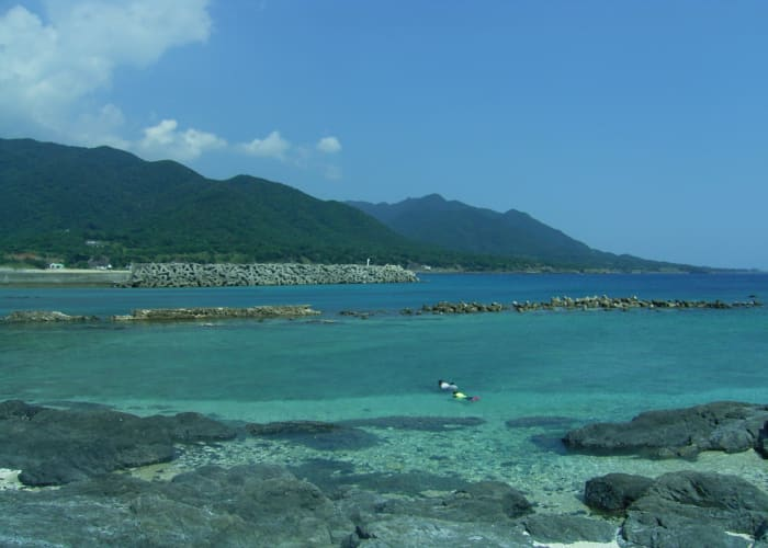 Clamming and Abalone Gathering in Yakushima