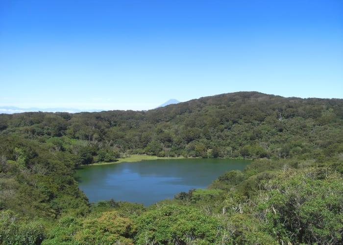 Trek Mount Amagi's Ridgeline