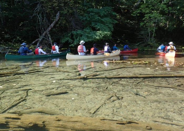 Kushiro River Canoe Tour