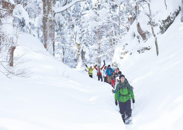 Explore the Winter Wonderland of Daisen