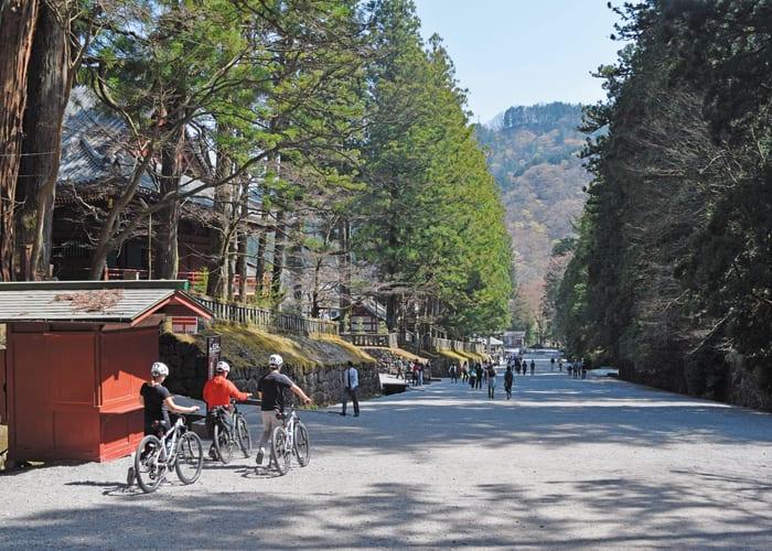 Explore Nikko on a Mountain Bike