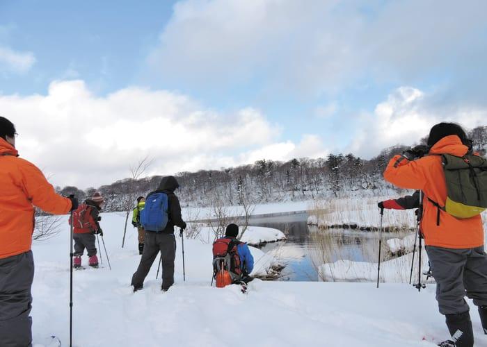 Guided Snowshoe Trek Around Onuma Marsh