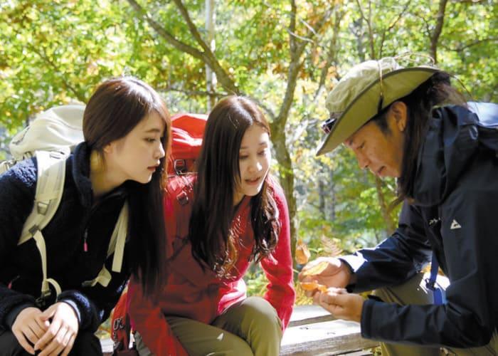 Guided Trekking Tour of Shiga Kogen's Ponds