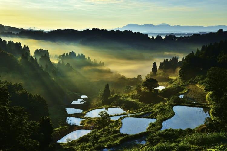 시코쿠, 시마네, 센다이, 그리고 다음 목적지로  — 새로운 장소를 탐험하세요