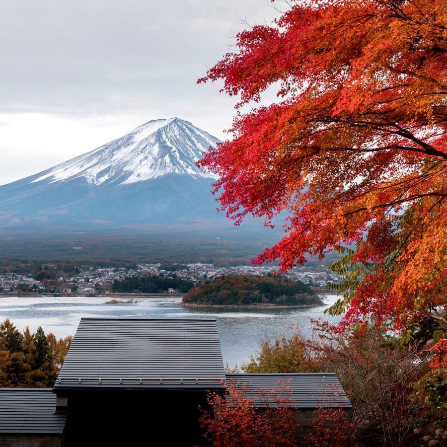 """일본에서 즐기는 아웃도어 라이프: """"뉴노멀"""" 세대의 여행법"""