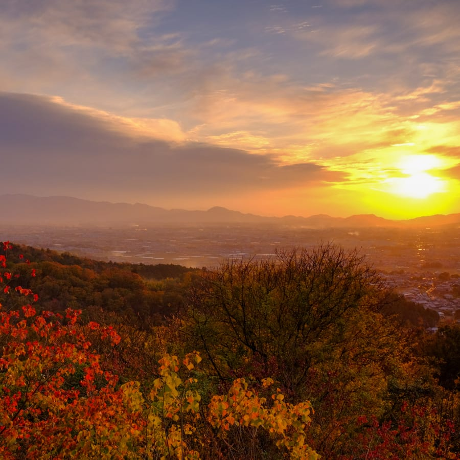 Experience the Charm and Culture of Japan in Autumn