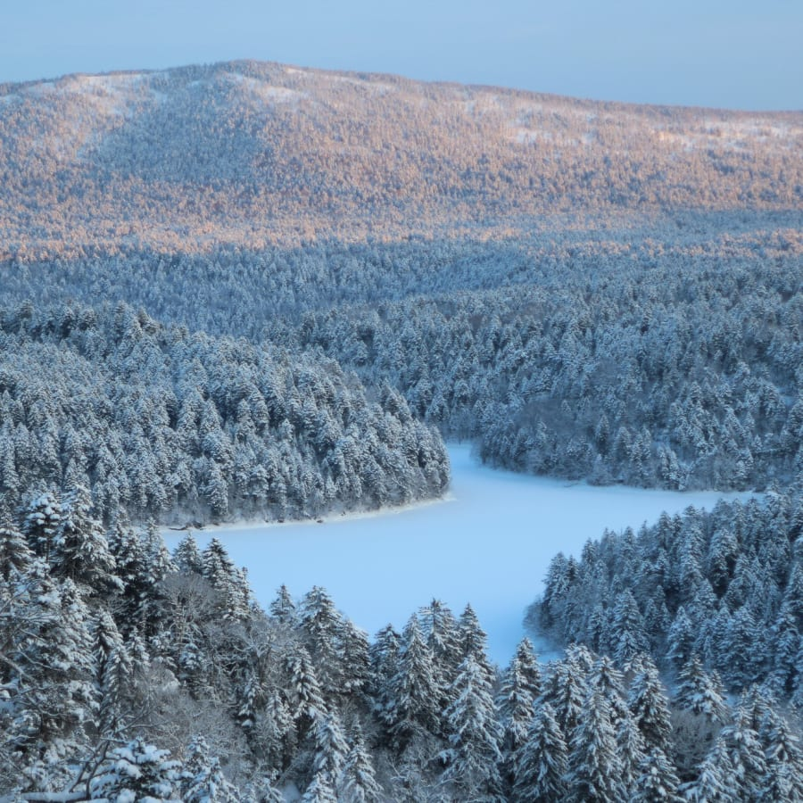 Hokkaido: Discover a Winter Wonderland of Art, Nature and Ainu Culture