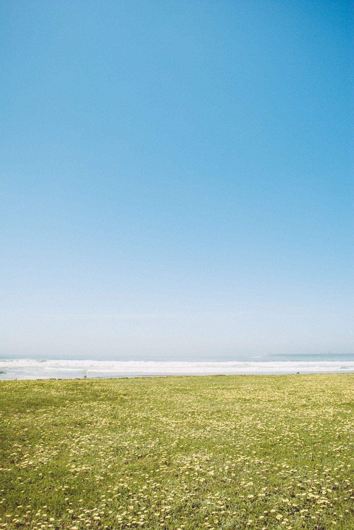 Matosinhos beach in a sunny day