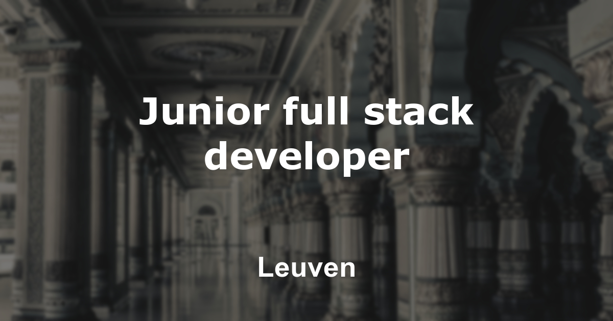 Junior full stack developer