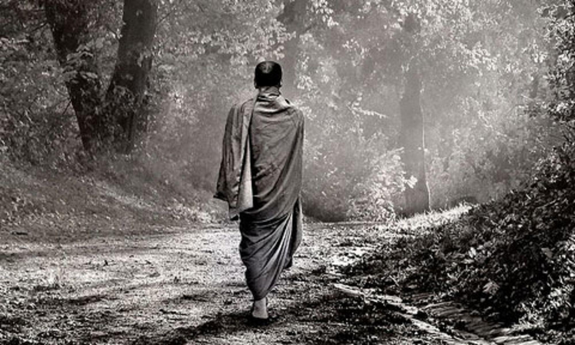 zen walk