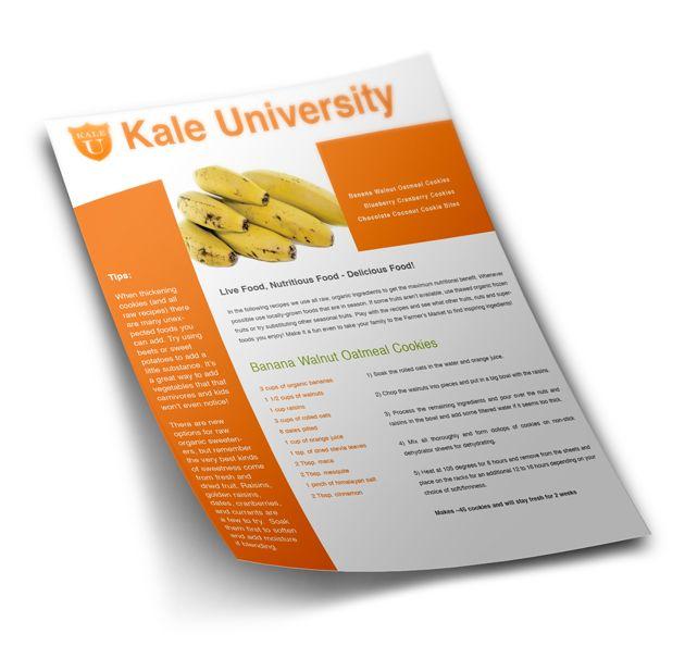 kale university flyer design