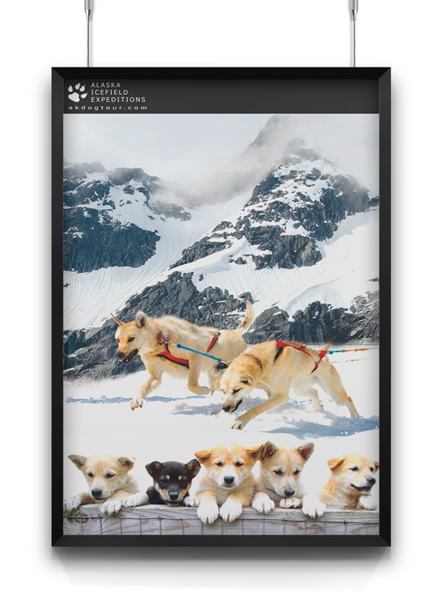 alaska icefield expeditions poster design