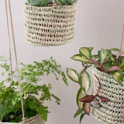 Bohemia Design Palm Leaf Hanging Basket