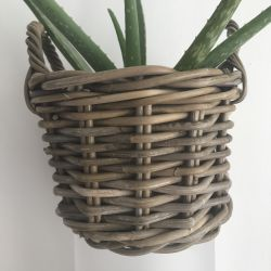 Jolly Brown Boho Rustic Basket Planter