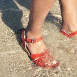 Salt water Original Sandals Navy
