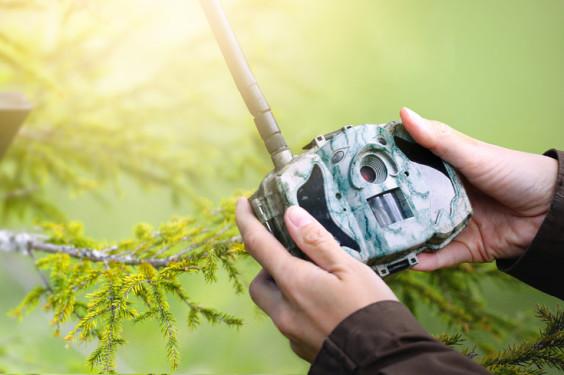 hunter setting up trail camera