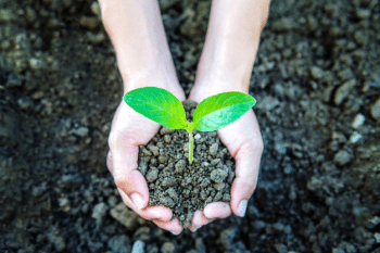 Why sustainability should be part of your PR