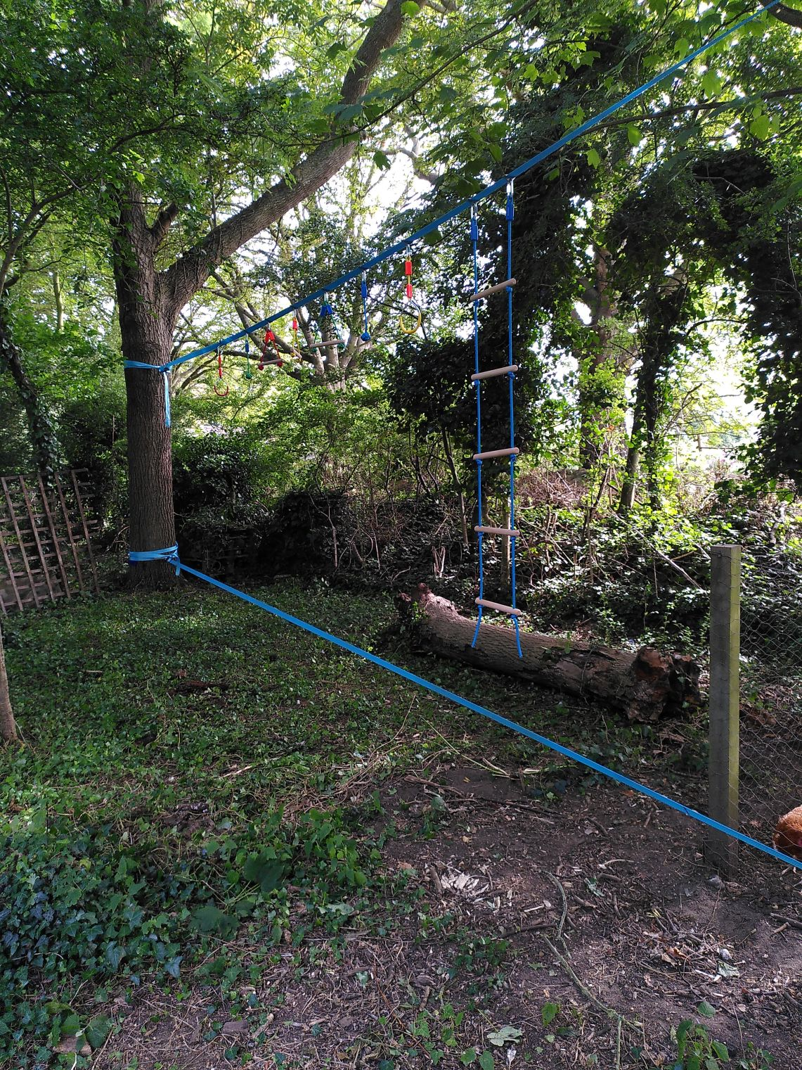 Two slack lines between two trees with various addons to hang onto