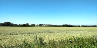 Photo a farm field with a blue sky in the background taken in the summer of 2018