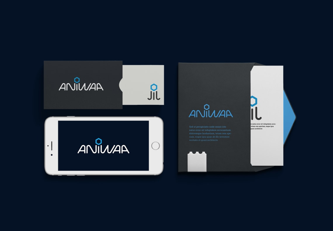 Identité visuelle Aniwaa Conception,Direction Artistique,Logo,Identité,Webdesign