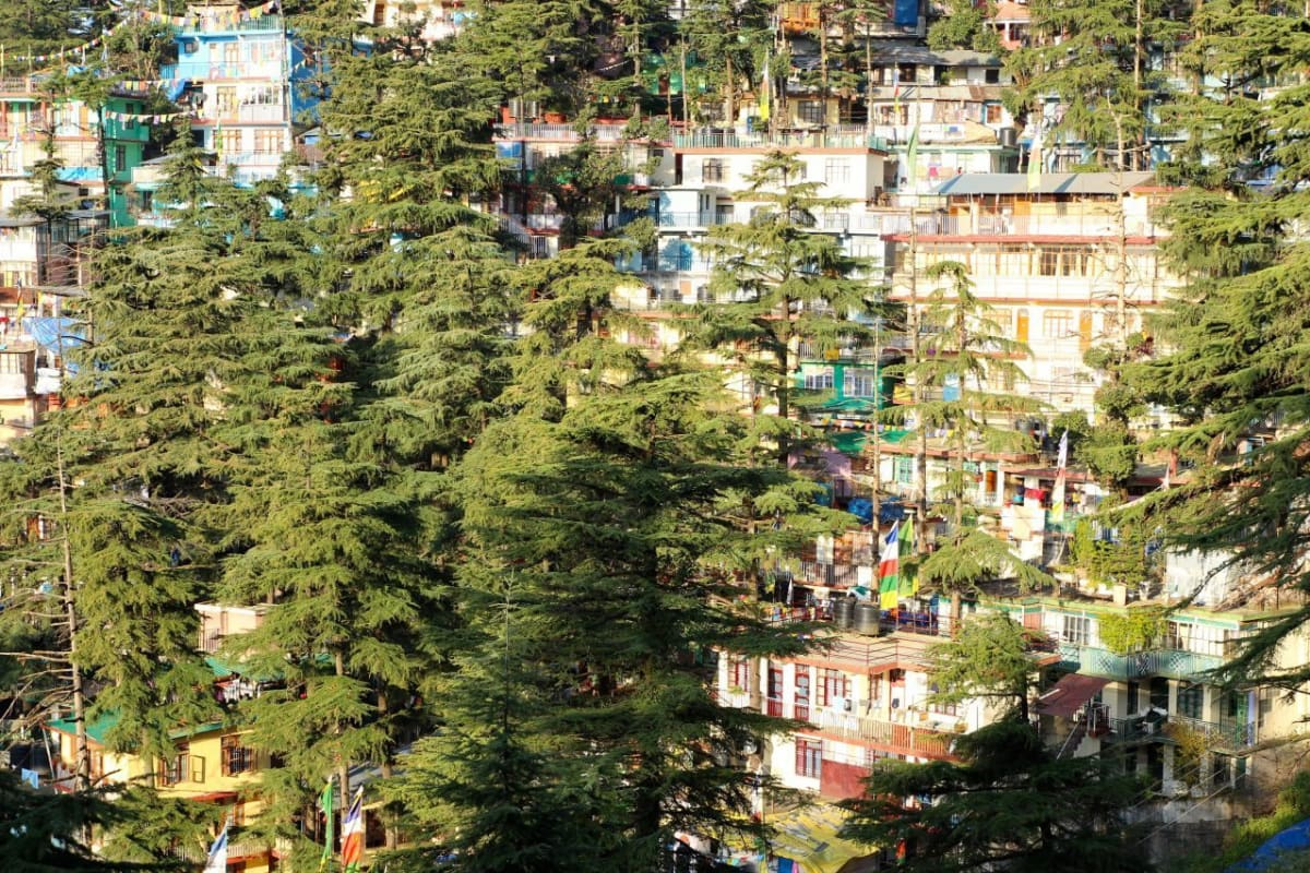 Dharamshala India at Sunrise