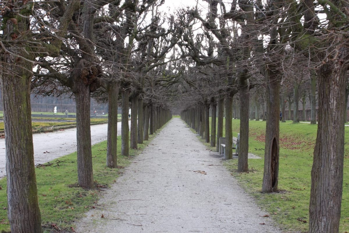 A manicured path through the fields near Augustusburg Palace in Brühl Germany