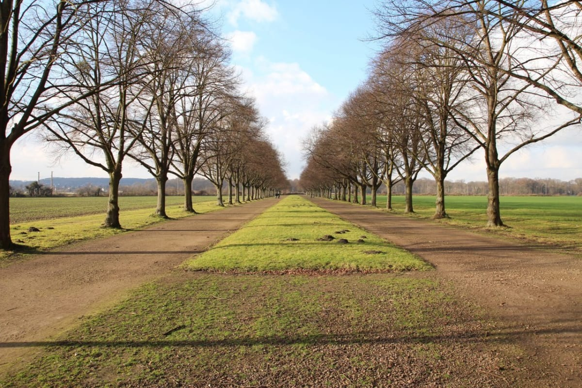 A manicured path through the fields near Augustusburg Palace in Brühl Germany | Germany Travel Guide