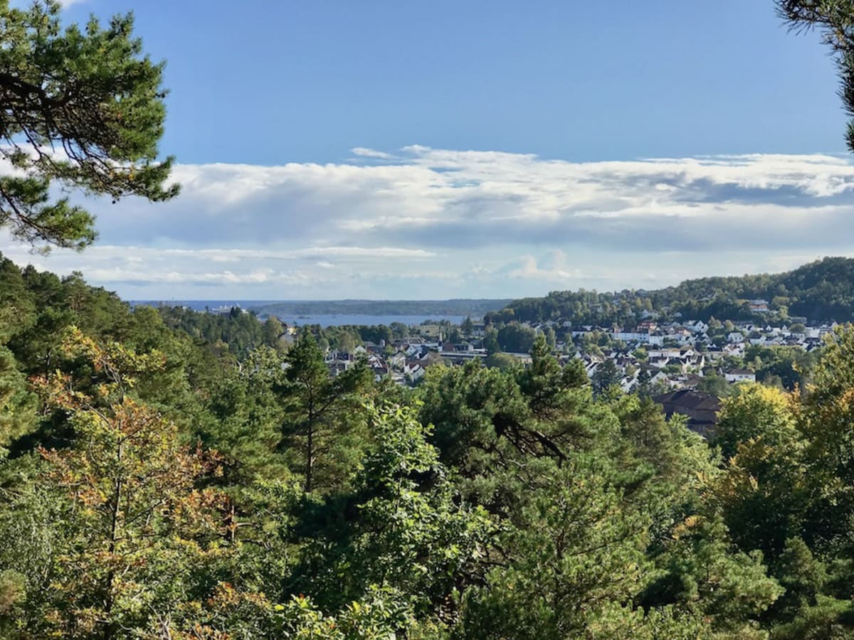 A view of Kristiansand, Norway from atop a hill in the Baneheia Park
