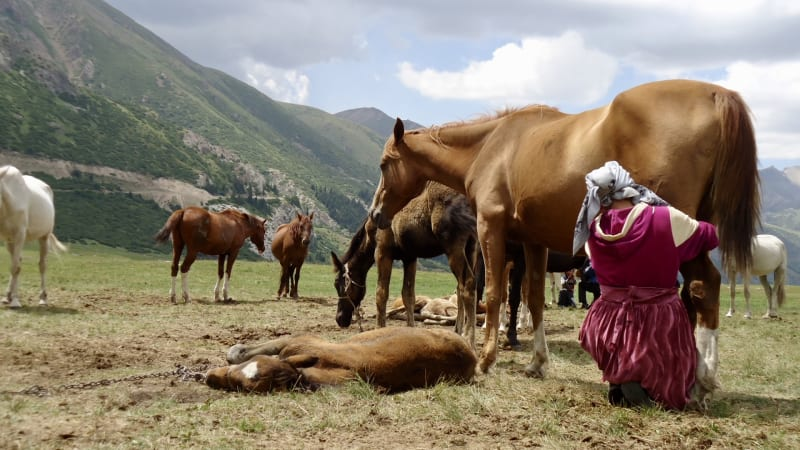 The Without a Path Podcast asked me to share travel advice in Kyrgyzstan