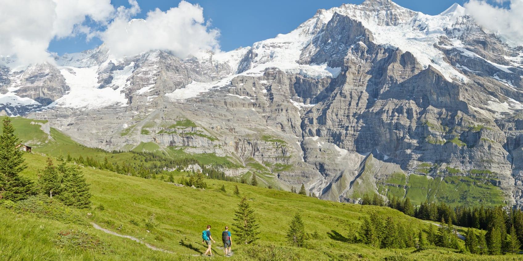 Kleine Scheidegg Wandern Lauberhorn Trail Panorama Sommer