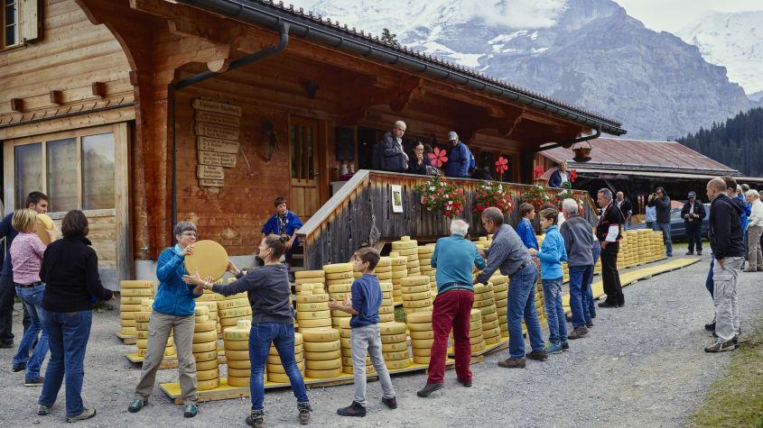 Winteregg Muerren Chaesteilet Alpkaeserei Staubbach