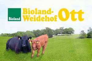 Bioland-Weidehof Ott - Bild 2