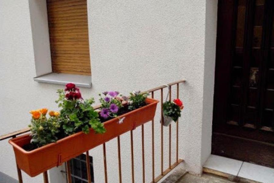 Tagesmutter Bochum - Bild 1