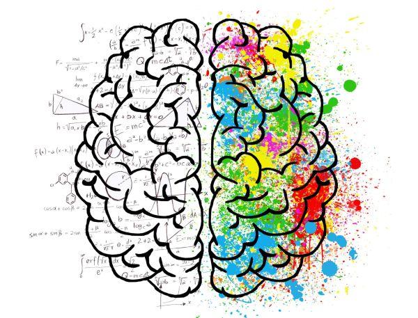 12 простых способов остановить деградацию мозга