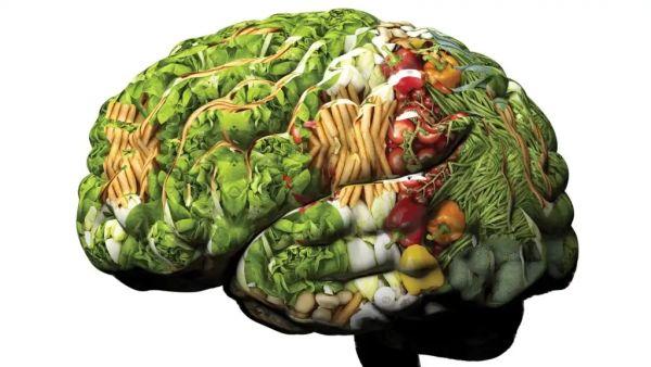 4 продукта для ума и почему они не делают большинство людей умнее