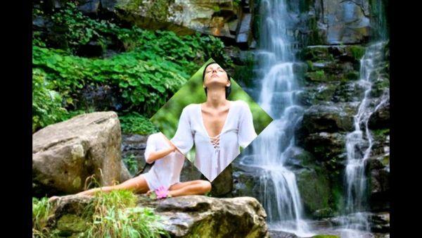 Медитацию можно заменить прогулкой по лесу