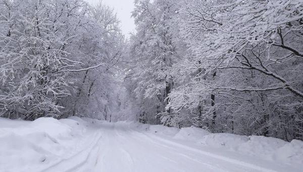 Половина населения Земли никогда не видела снега и еще 24 необычных факта о нашем мире