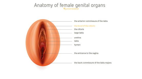 orgasm achieve vaginal Unable to