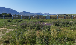Vacant  Land For Sale in Nuwe Uitsig, Wellington