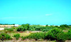 Vacant  Land For Sale in Mossel Bay Central, Mossel Bay