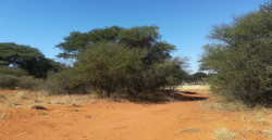 Land For Sale in Kathu, Kathu