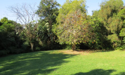 Land For Sale in Grayleigh, Westville