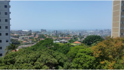Apartment For Sale in Glenwood, Durban